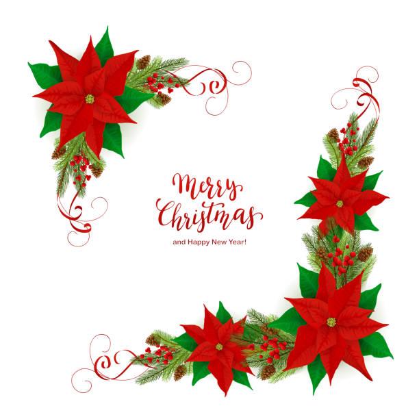 stockillustraties, clipart, cartoons en iconen met vrolijk kerstfeest en decoraties met poinsettia en fir tree takken - kerstster