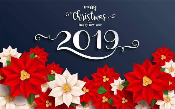 stockillustraties, clipart, cartoons en iconen met vrolijke kerstmis en gelukkig nieuwjaar 2019 achtergrond mooie bloem papier knippen stijl van kunst met bloempotten op kleur achtergrond. - kerstster