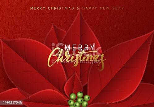 Merry Christmas and Happy New Year, background decorated with beautiful red buds poinsettia flowers