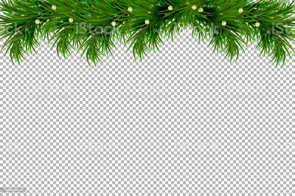 merry christmas and happy new year background with fir branches isolated on transparent background modern