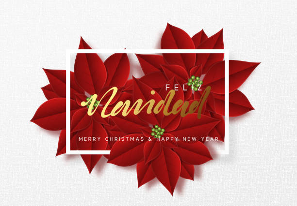 Merry Christmas, background decorated with beautiful red buds poinsettia flowers. Merry Christmas, background decorated with beautiful red buds poinsettia flowers. Spanish text Feliz Navidad navidad stock illustrations