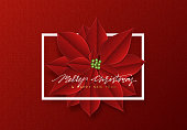 Merry Christmas, background decorated with beautiful red buds poinsettia flowers.