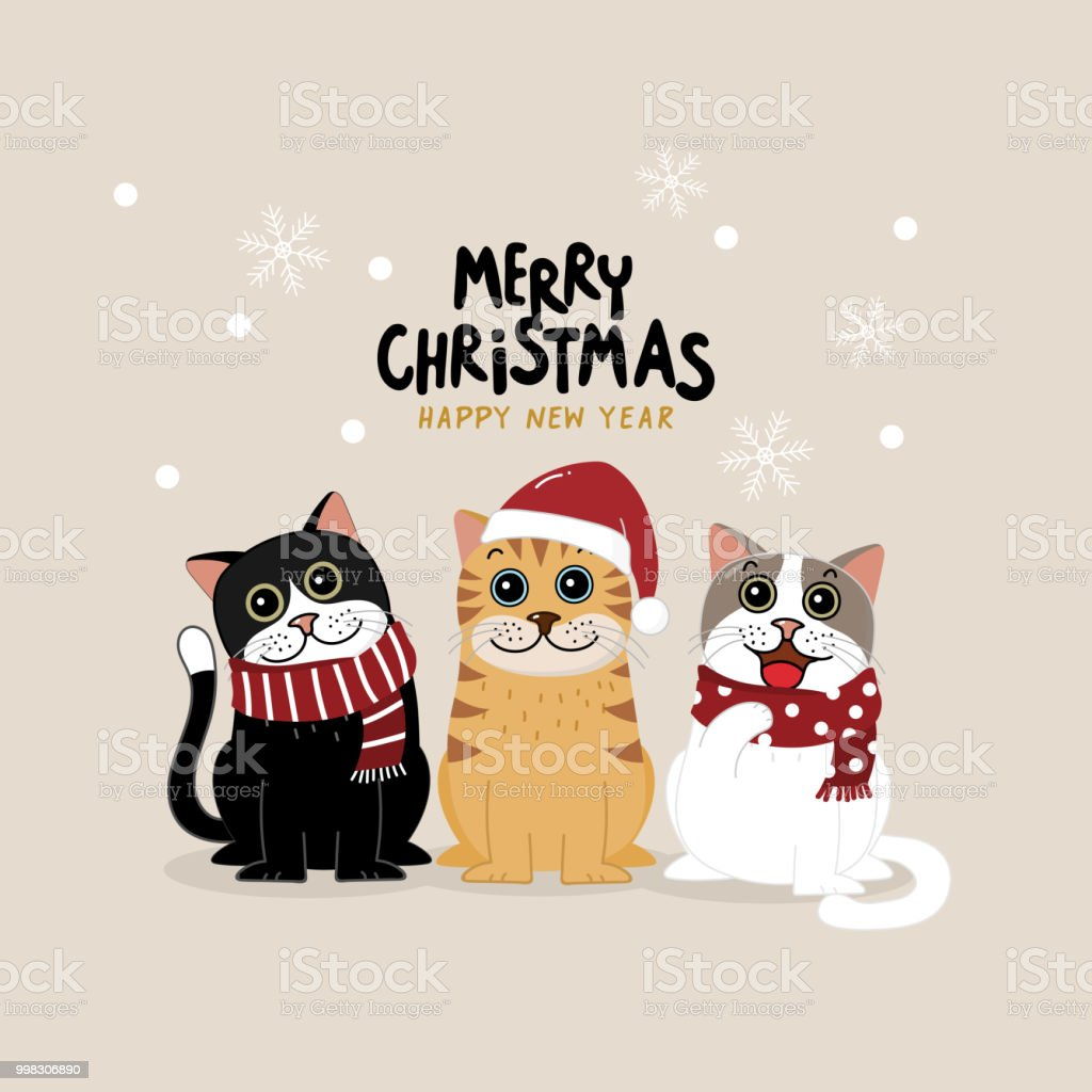 Frohe Weihnachten Katze.Frohe Weihnachten Grusskarte Mit Niedlichen Katze Winter Outfits Zu