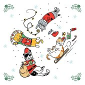 Merry Christmas greeting card with cute cat wear winter outfits. Happy holidays cartoon character vector.
