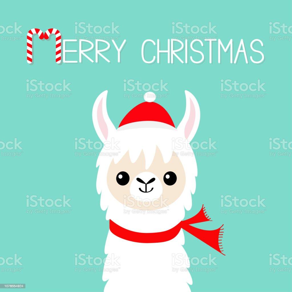 メリークリスマスラマのアルパカの赤ちゃん顔サンタ クロースの赤い帽子スカーフ明けましておめでとうかわいい漫画面白い可愛い文字グリーティング カードの印刷フラッ アルパカのベクターアート素材や画像を多数ご用意 Istock