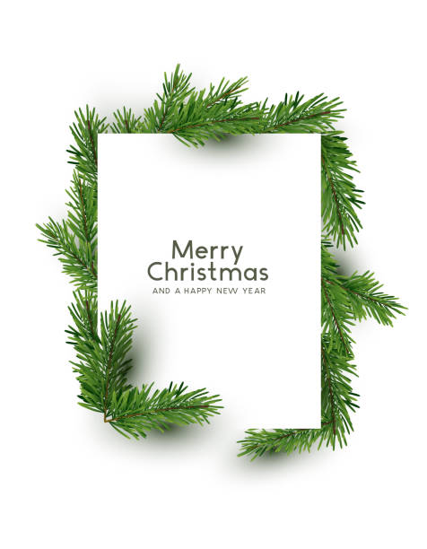 Merry Christmas Shape Made With Pine Branches A christmas rectangle shape made from natural pine branches. Top down flat lay view  - vector illustration. holiday background stock illustrations