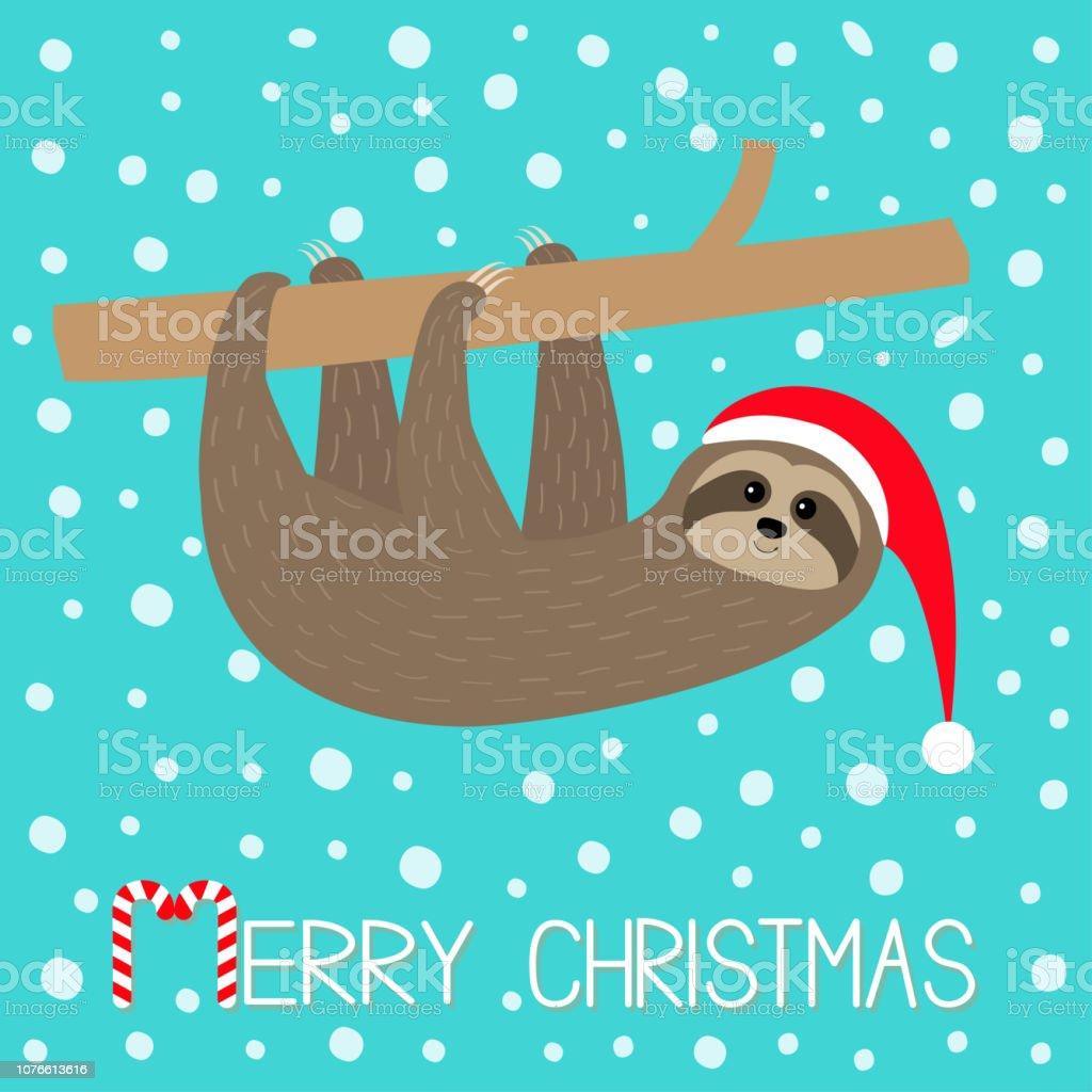 Joyeux Noël Séance De Paresse Suspendu à La Branche Bonnet De Noel