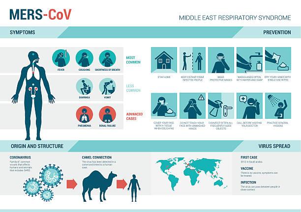 ilustraciones, imágenes clip art, dibujos animados e iconos de stock de mers_cov infografías y prevención de señal - protección
