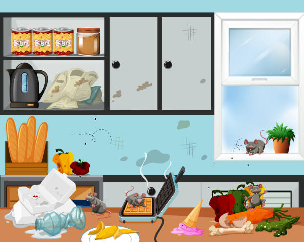 Royalty Free Messy Kitchen Clip Art, Vector Images & Illustrations on