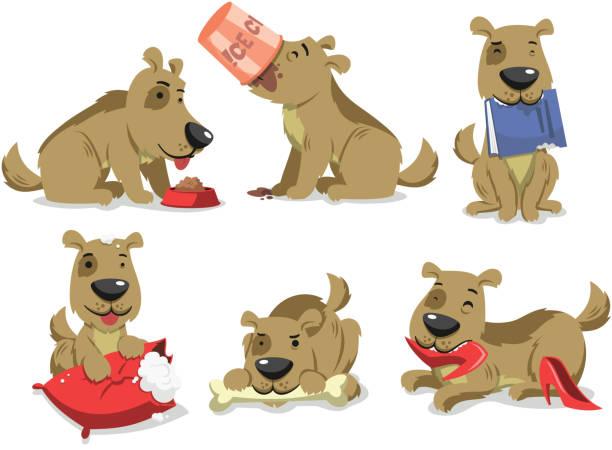 chaotisch Hund essen Dinge – Vektorgrafik