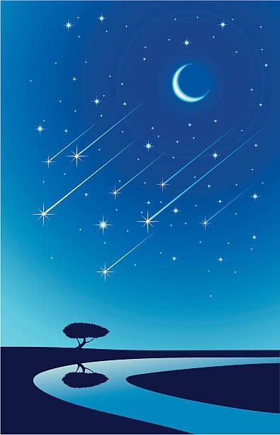 метеоритный дождь - астрономия stock illustrations