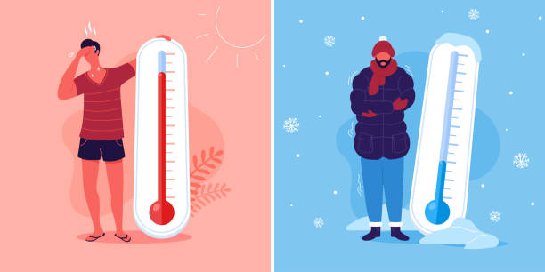 Meteorology thermometers. Heat and cold weather vector illustration. Cartoon characters in summer and winter season. Meteorology thermometers. Heat and cold weather vector illustration. Cartoon characters in summer and winter season. heat temperature stock illustrations