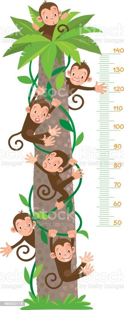 Meter wall with big palm tree and funny monkeys vector art illustration