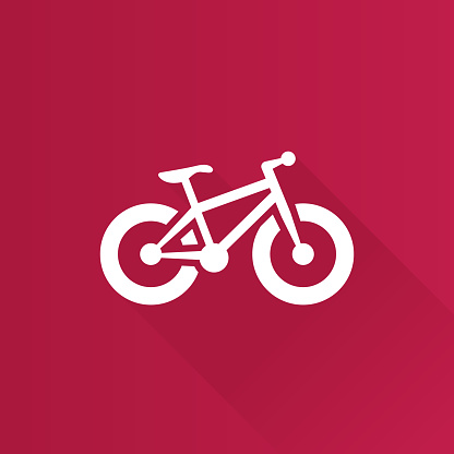 Metro Icon - Fat tyre bicycle