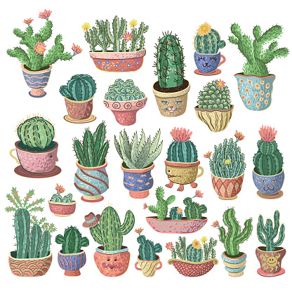 Mexican cactus and aloe set. Desert spiny plant, mexico cacti flower and tropical home plants or arizona summer climate garden cactuses and succulent. Vector illustration