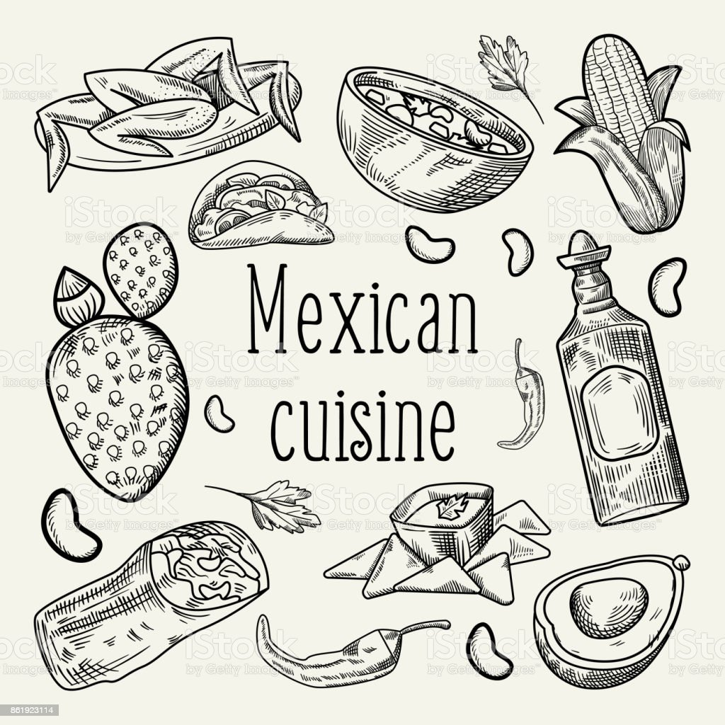 Dibujado A Mano Comida Mexicana Expuso Doodle Cocina Tradicional De ...