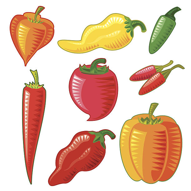Mexican Hot Peppers (Isolated) vector art illustration