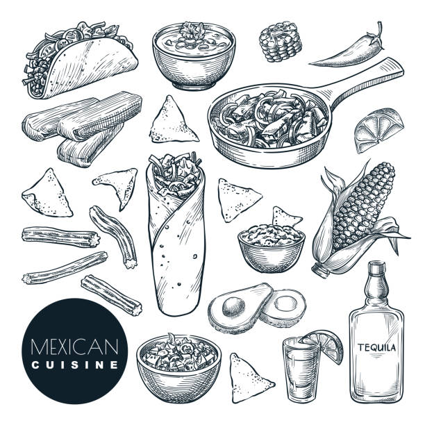 ilustrações de stock, clip art, desenhos animados e ícones de mexican traditional food, vector sketch illustration. hand drawn snack meal set. restaurant, cafe menu design elements - sauce tomatoes
