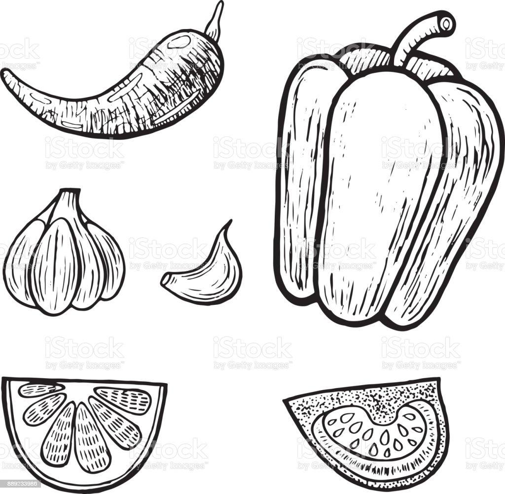 Mexikanisches Gemüse Legen Grafischen Malvorlagen Für Erwachsene ...
