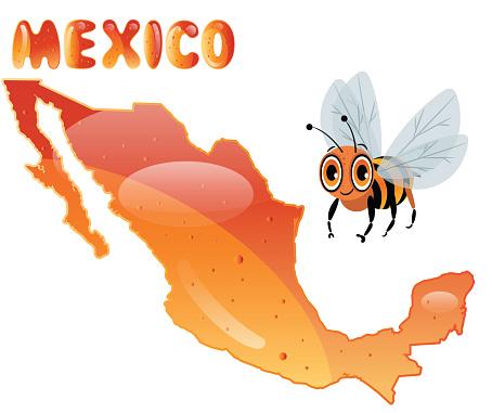 Mexico and  Honey