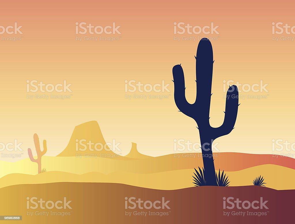 Mexico cactus desert sunset, vector illustration royalty-free stock vector art