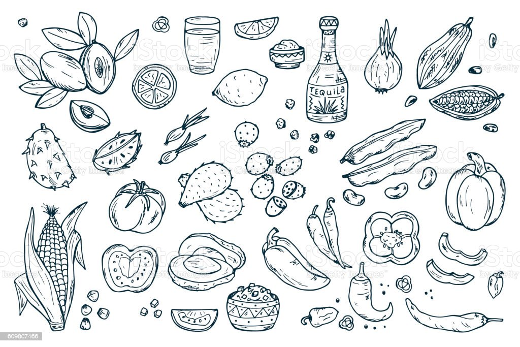 Mexico Vector set. Mexican Food. Fresh Fruits, Vegetables, Tequila vector art illustration