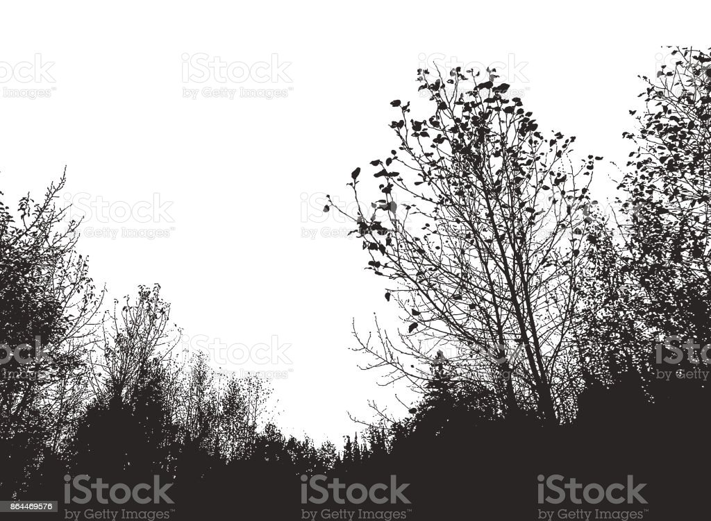 Mezzotint silhouette of trees vector art illustration