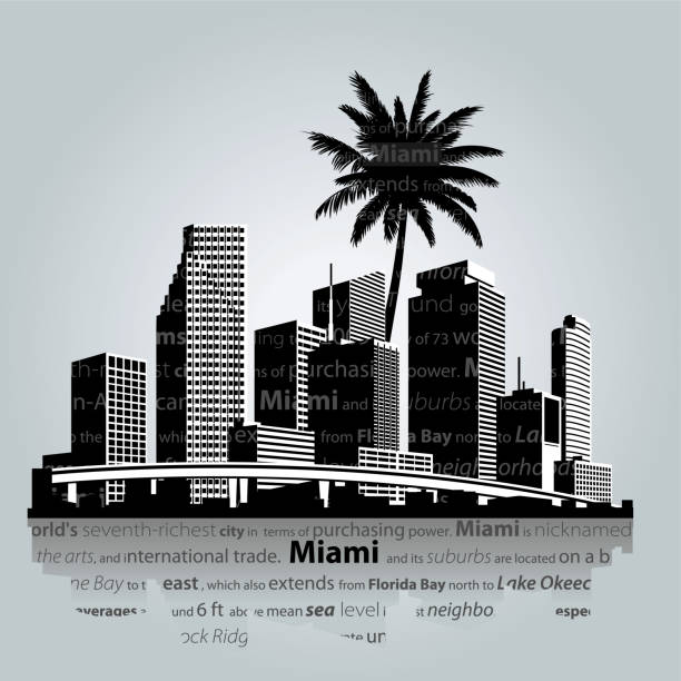 Miami skyline. Vector illustration Miami. City skyline vector illustration miami stock illustrations
