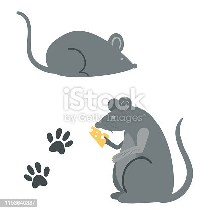 Mice with Paw Prints