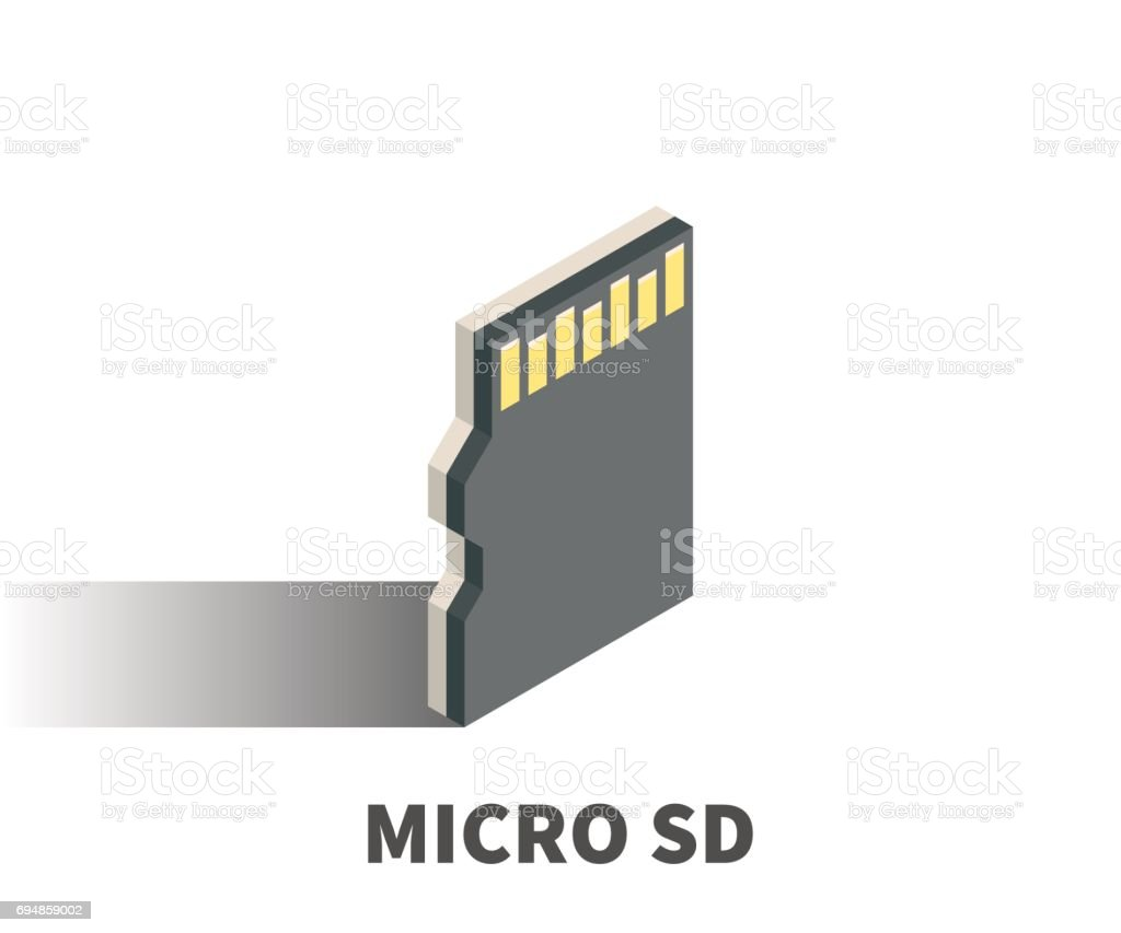 Micro Sd Card Icon Vector Symbol In Isometric 3d Style Isolated On