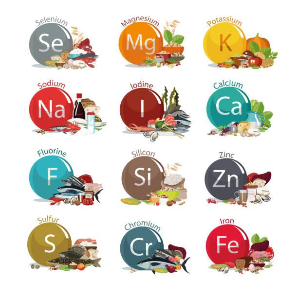 12 mikroelementów dla zdrowia ludzkiego. - minerał stock illustrations