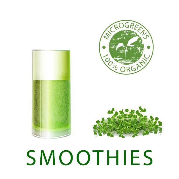illustrazioni stock, clip art, cartoni animati e icone di tendenza di microgreen sprout smoothies for healthy eating - erba medica