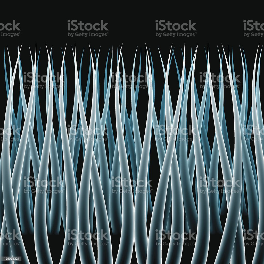 Microscopic Hair royalty-free microscopic hair stock vector art & more images of backgrounds