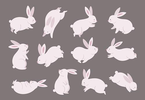 Mid autumn bunny. Chinese festival, rabbit modern character set. Asian funny flat holiday animals, oriental moon fest vector illustration