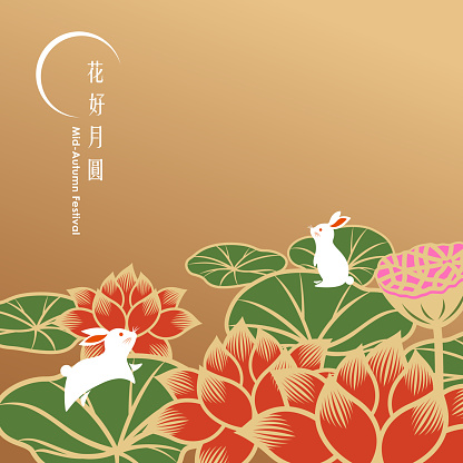 Mid Autumn Lotus and Rabbits