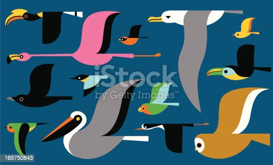 Vector bird elements.  Colors can be easily edited.