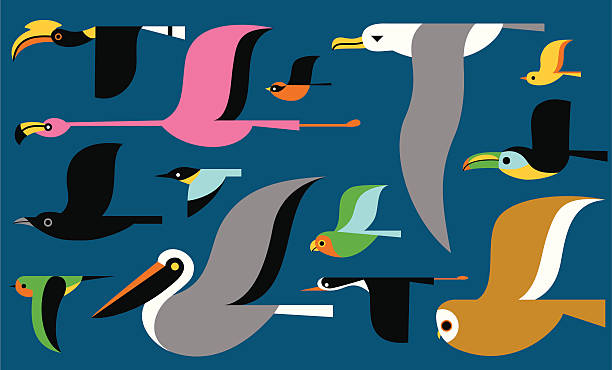 stockillustraties, clipart, cartoons en iconen met migrating birds - ijsvogels