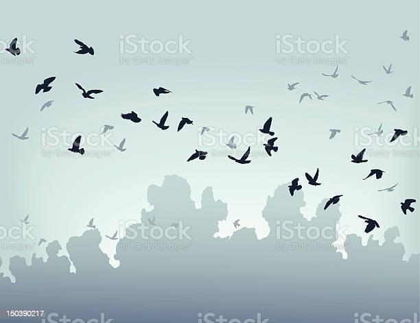 Migration vector id150390217?b=1&k=6&m=150390217&s=612x612&h=jeimqzsp 9rx2y3pzwpmuzy2lvbqwvgvv0x9warq9nm=