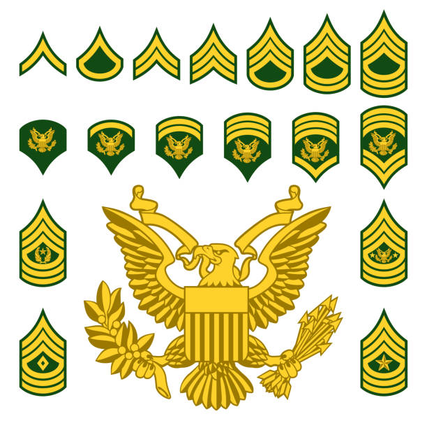 Military Army Enlisted Rank Insignia Set of army military American enlisted ranks insignia badges icons major military rank stock illustrations