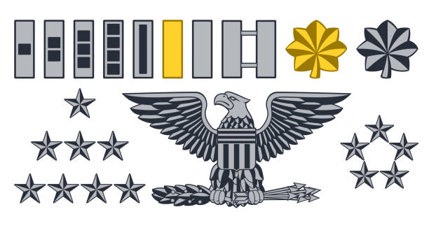 Military Army Insignia Ranks Set of military American army officer ranks insignia badges icons major military rank stock illustrations