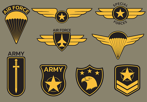Military badge, army patch and insignia set. Air and airforce emblrms with eagle, star and plane. Vector illustration.