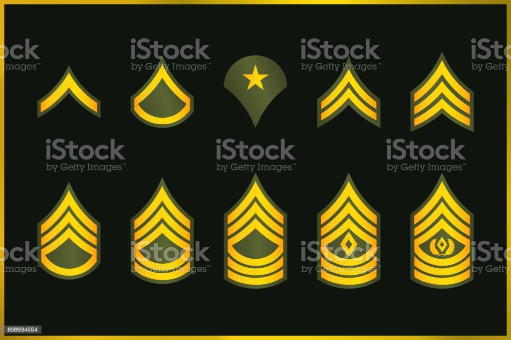 Military Ranks Stripes and Chevrons. Vector Set Army Insignia