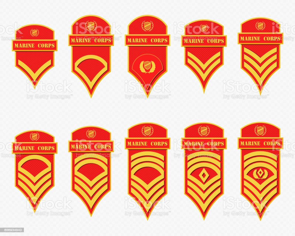 Military Ranks Stripes and Chevrons. Vector Set Army Insignia vector art illustration