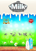 Milk ads. Green field and cows vector background