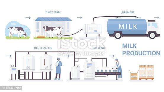 istock Milk bottle production process vector illustration, cartoon flat infographic poster with processing line in automated dairy factory 1264379782