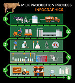 Production stages and processing of milk. Vector illustration isolated on dark background