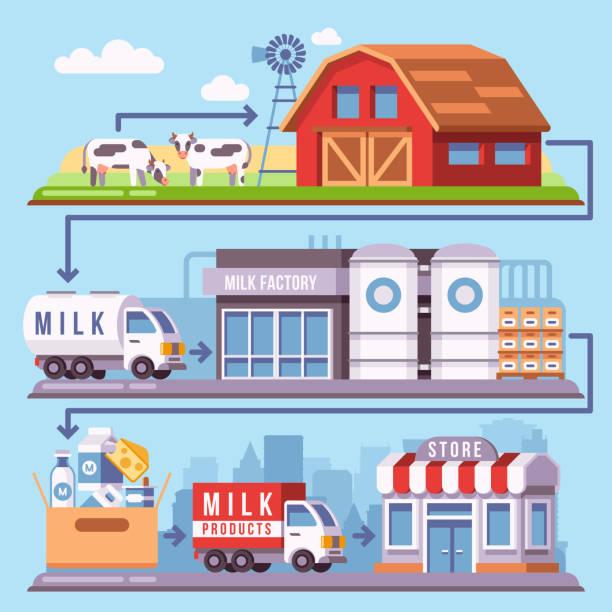 illustrations, cliparts, dessins animés et icônes de production de lait provenant d'une ferme laitière à travers l'usine de traitement d'illustration vectorielle consommateur - infographie industrie manufacture production