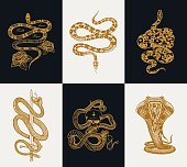 Vintage engraving of Snakes, Rock snake, Blackbacked Sea snake, Boa constrictor, Coral snake, Elephant trunk snake (Acrochordus javanicus)