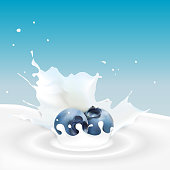 Vector illustration of Milk splash with blueberry