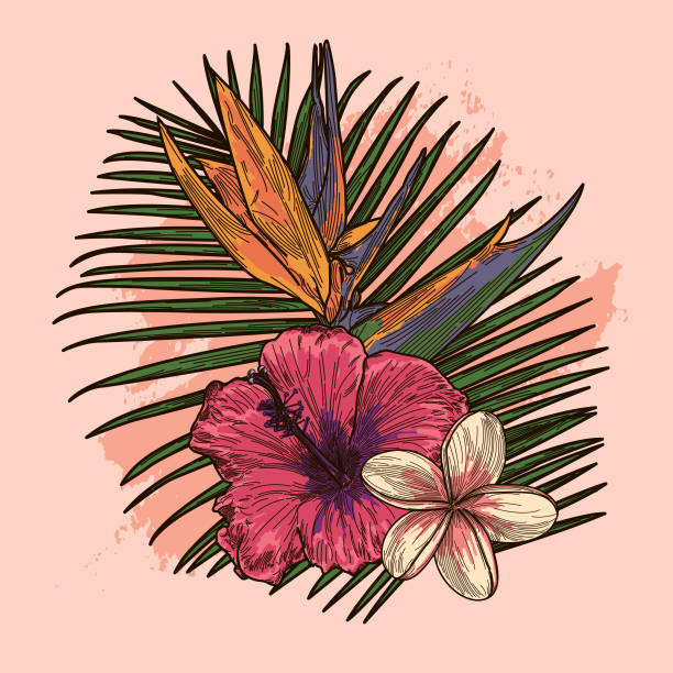 Millennial Pink and Coral Tropical Plant and Floral Bouquet A composition featuring a collection of tropical plants and flowers. bird of paradise plant stock illustrations